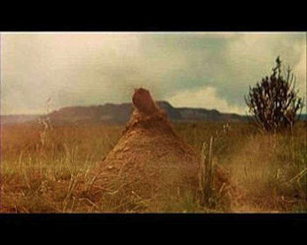 Indiana-Jones-et-le-royaume-du-crane-de-cristal-6