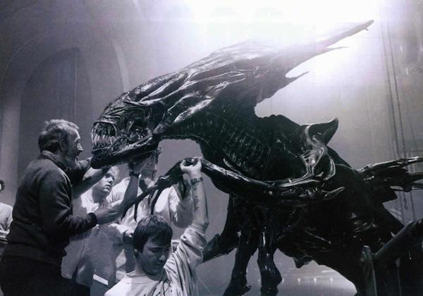 alien attentyion ca mord