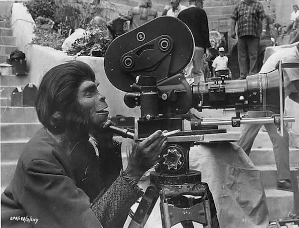 planet des singes
