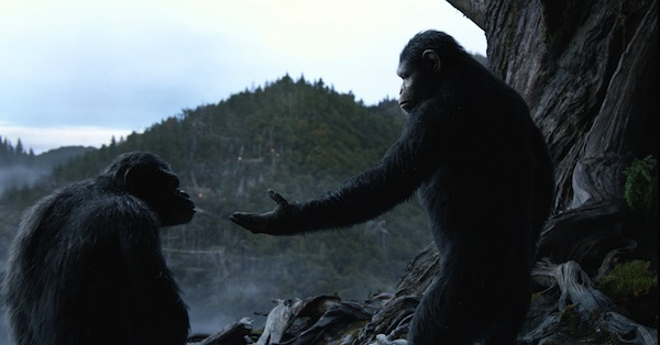 la-planete-des-singes-l-affrontement-dawn-of-the-planet-of-the-apes-30-07-2014-10-g