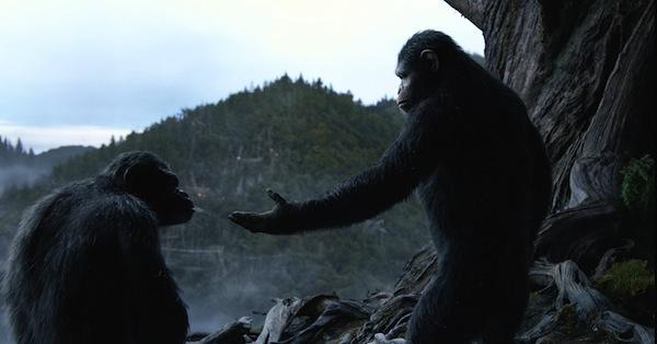 la-planete-des-singes-l-affrontement-dawn-of-the-planet-of-the-apes-30-07-2014-10-g