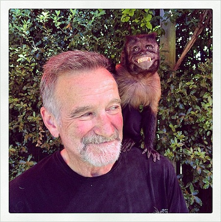 1408029443_robin-williams-crystal-lg