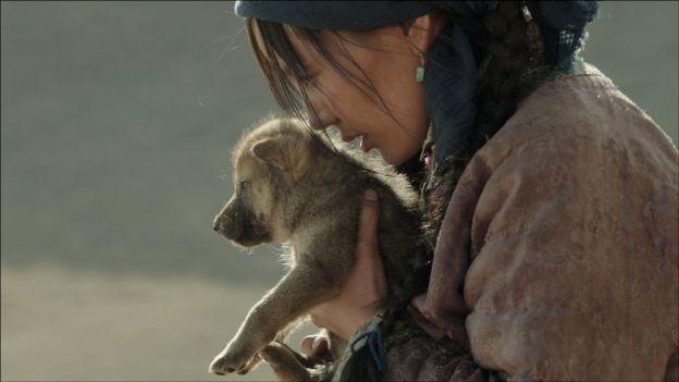 dernier loup
