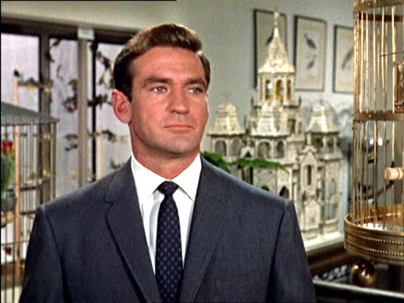 rod-taylor-in-una-scena-del-film-gli-uccelli-1963-131812