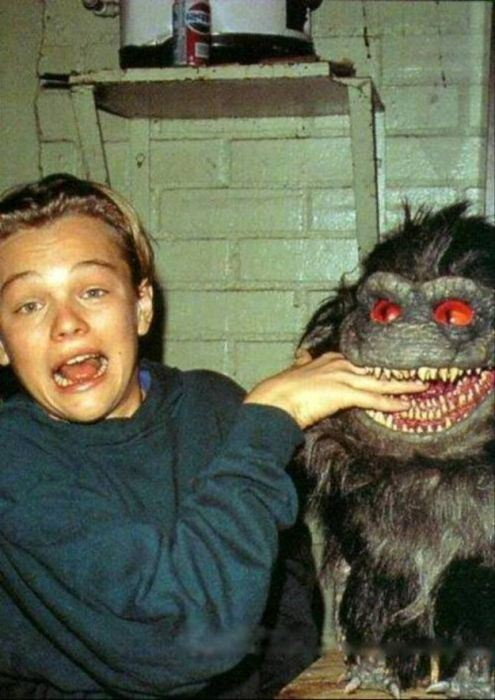 7-critters3