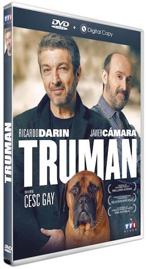 Critique de film gay