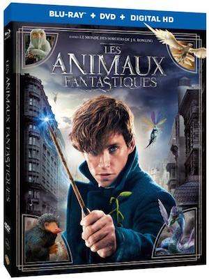 les_animaux-fantastiques_blu-ray