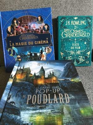 Gallimard Fete Harry Potter Et Les Animaux Fantastiques